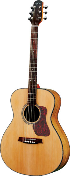 UK Guitar Shop, electric, acoustic and bass guitars, Walden Steel Strung Acoustic Guitar G570.